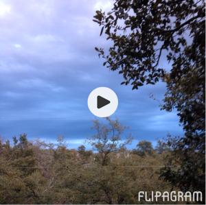 Screen Shot 2014-04-28 at 10.18.54 AM